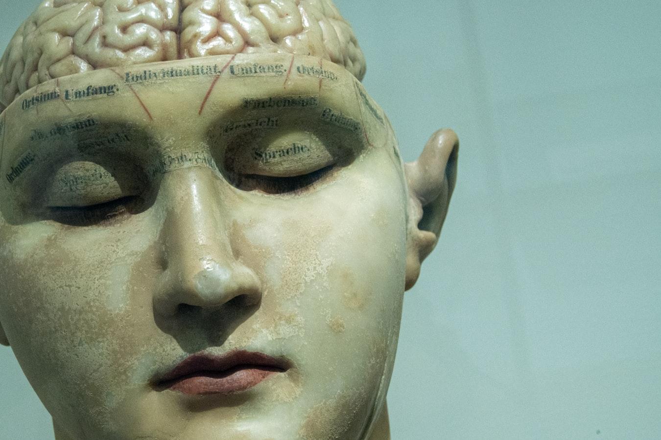 Neurowetenschappers in de rechtszaal