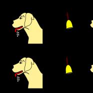 Kevers, Kattensnoepjes en Kaaskroketten: Behaviorisme in de psychologie en de filosofie
