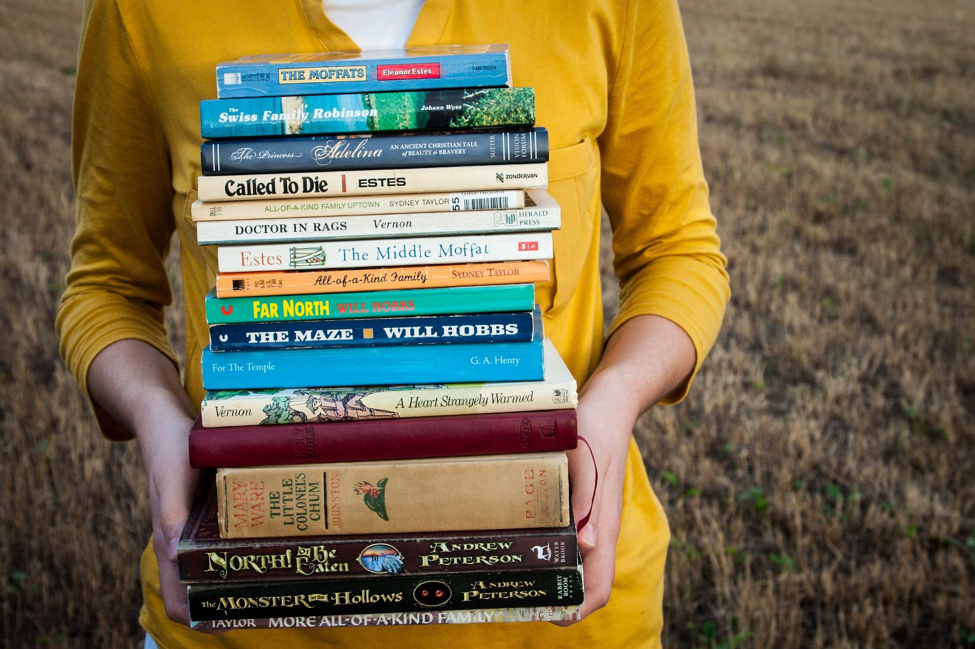 Leidt literatuur tot kennis?