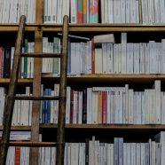 Hoe dekoloniseer je het curriculum? Drie lessen uit de praktijk